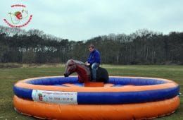 Rodeo Paard