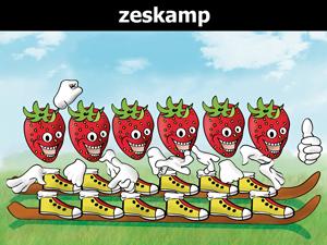 Zeskamp