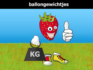 Ballongewichtjes