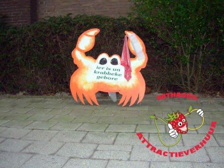 Geboorte bord krab rood
