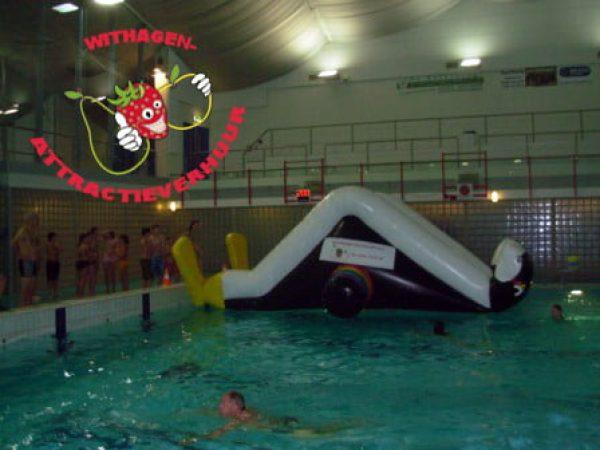 pinguïn klimmen op water