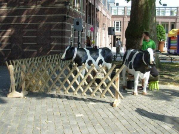 Koe melk spel