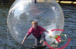 Waterbal per stuk