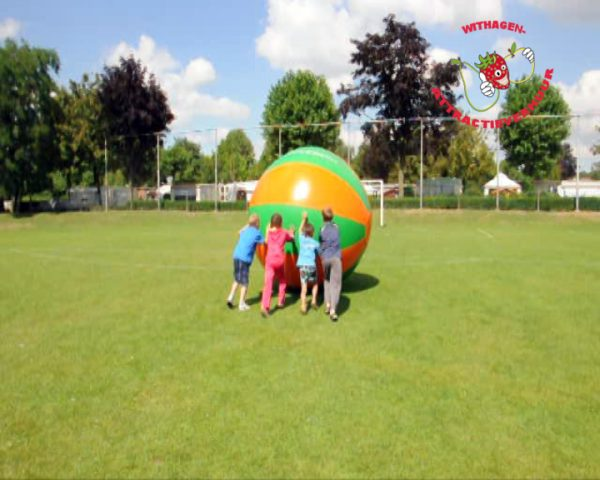 Reuzenbal teambuilding